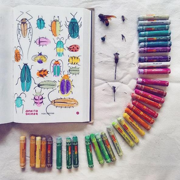July 16 Beetles